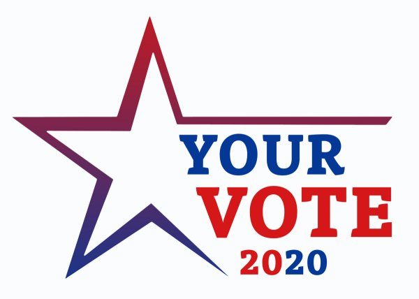 Visual reading Your Vote 2020.