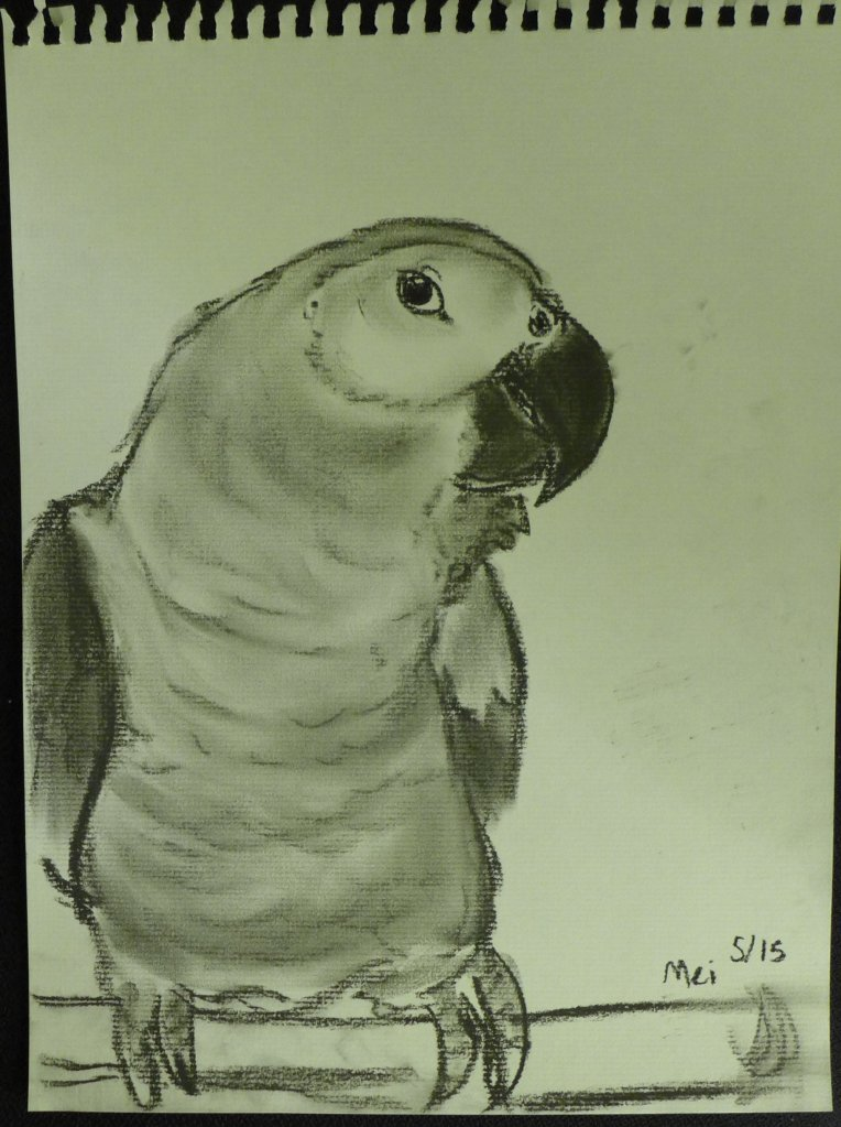 Drawing of a parrot.