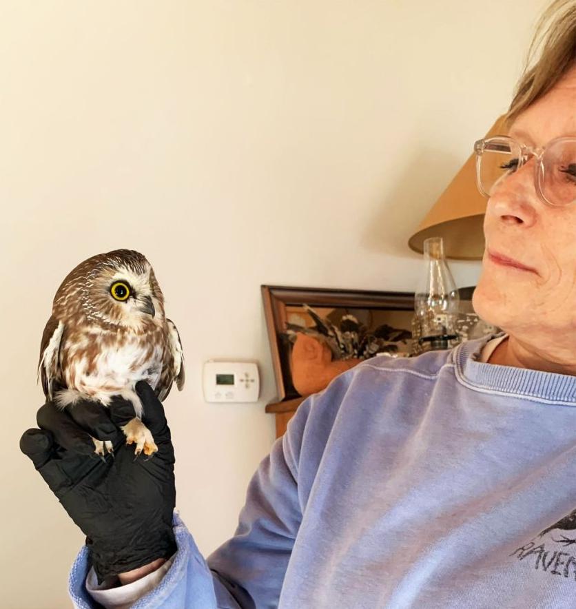 Ellen Kalish of Ravensbeard Wildlife Center holding owl.